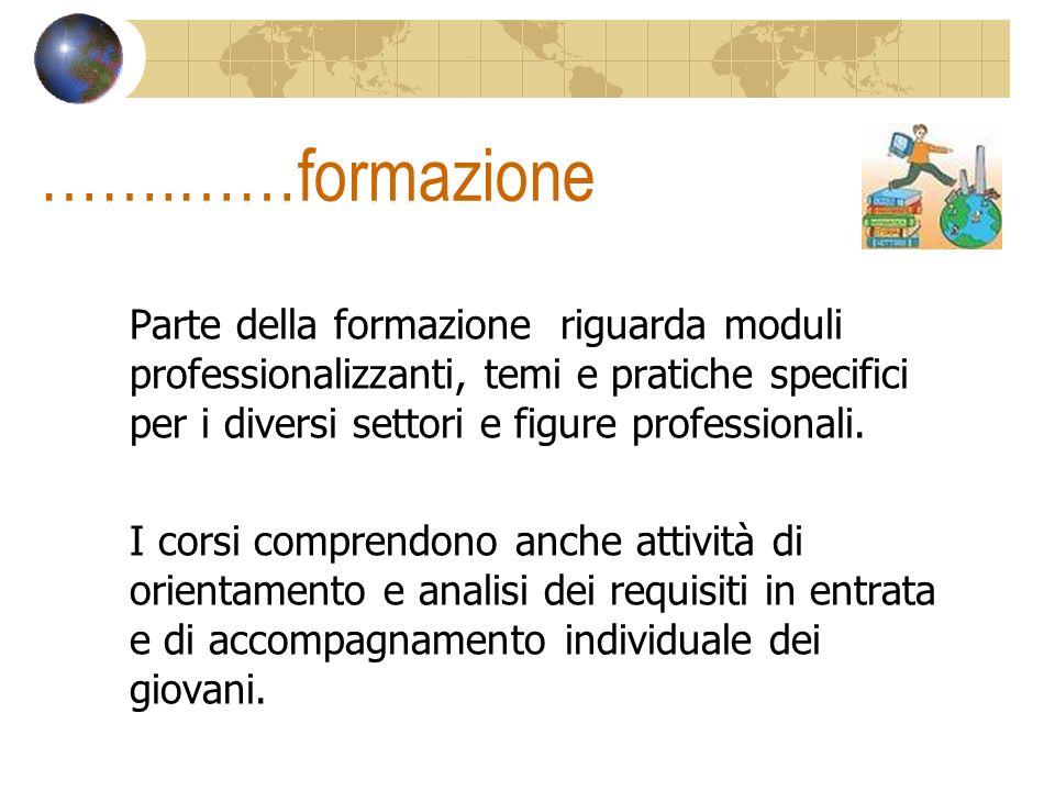 …….……formazione Parte della formazione riguarda moduli professionalizzanti, temi e pratiche specifici per i diversi settori e figure professionali. I
