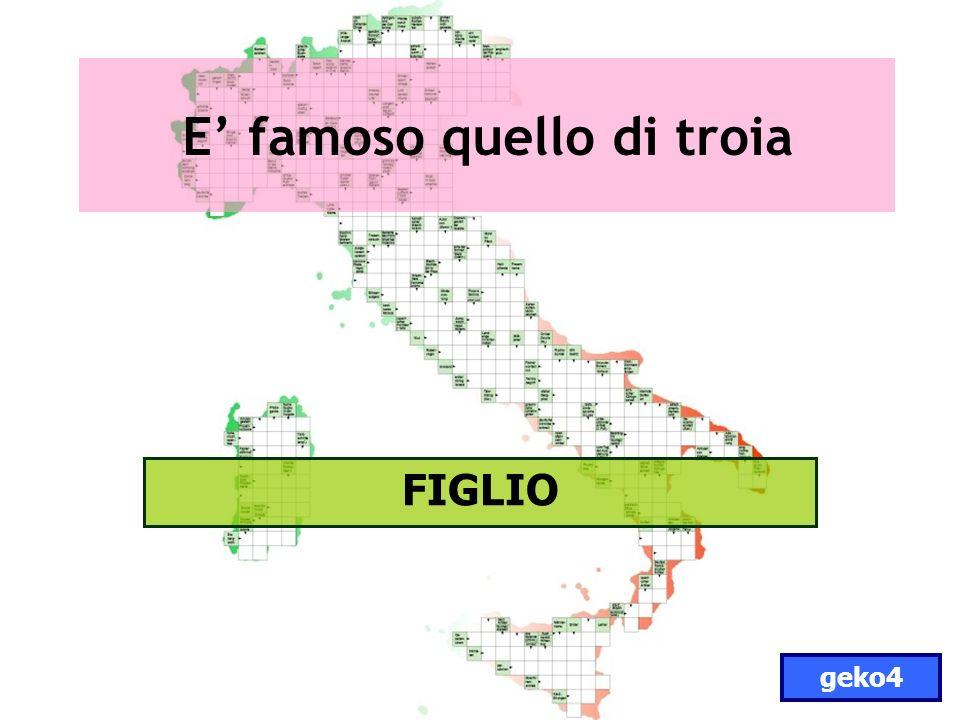 E famoso quello di troia FIGLIO geko4