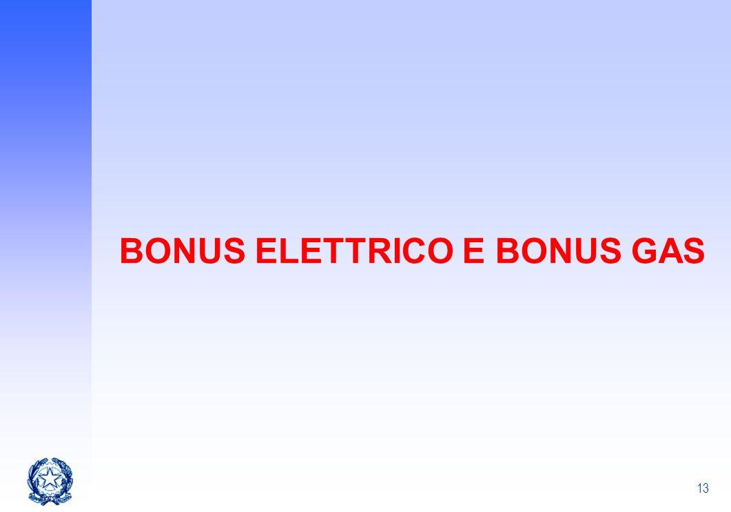 13 BONUS ELETTRICO E BONUS GAS