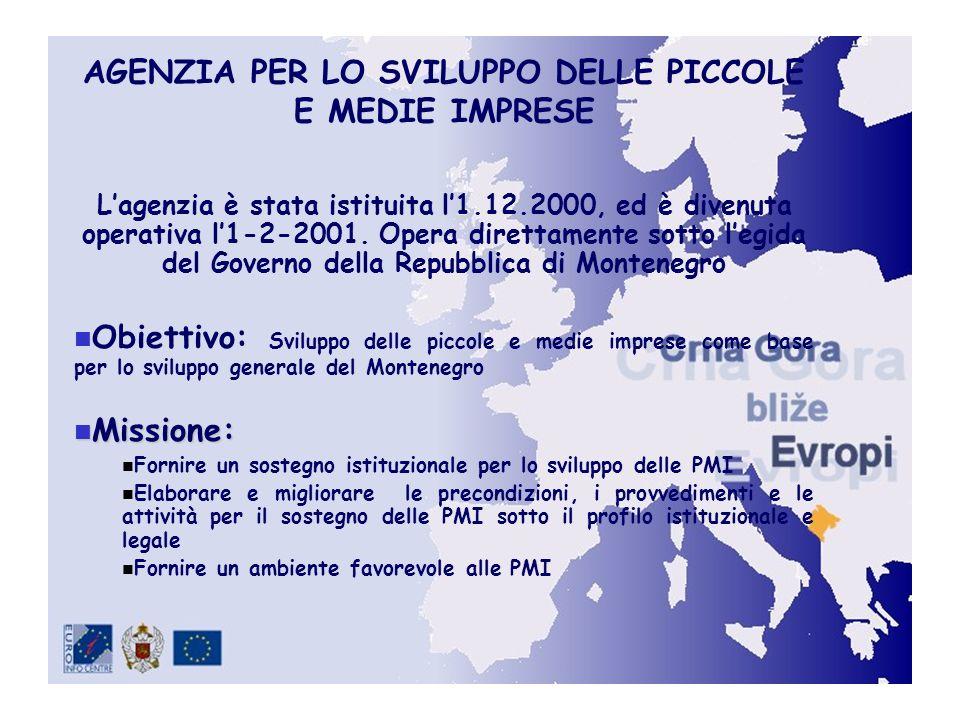 AGENZIA PER LO SVILUPPO DELLE PICCOLE E MEDIE IMPRESE Lagenzia è stata istituita l1.12.2000, ed è divenuta operativa l1-2-2001.