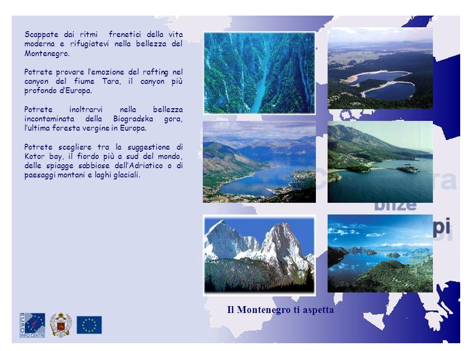 Scappate dai ritmi frenetici della vita moderna e rifugiatevi nella bellezza del Montenegro.