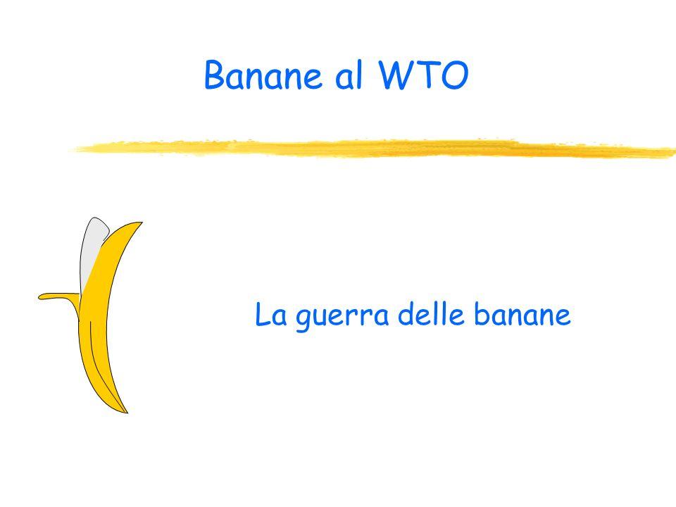Il grande rischio: la perdita di potere degli Stati nazionali In pratica con il sistema del WTO si condiziona il potere legislativo degli Stati nazion