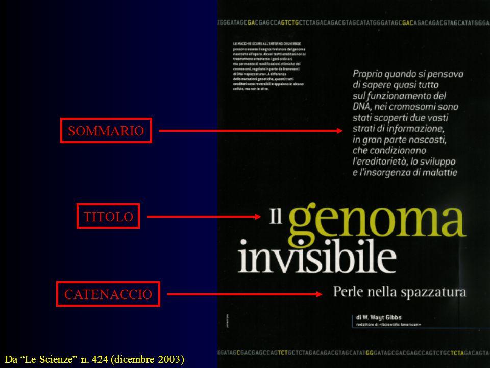 TITOLO CATENACCIO SOMMARIO Da Le Scienze n. 424 (dicembre 2003)
