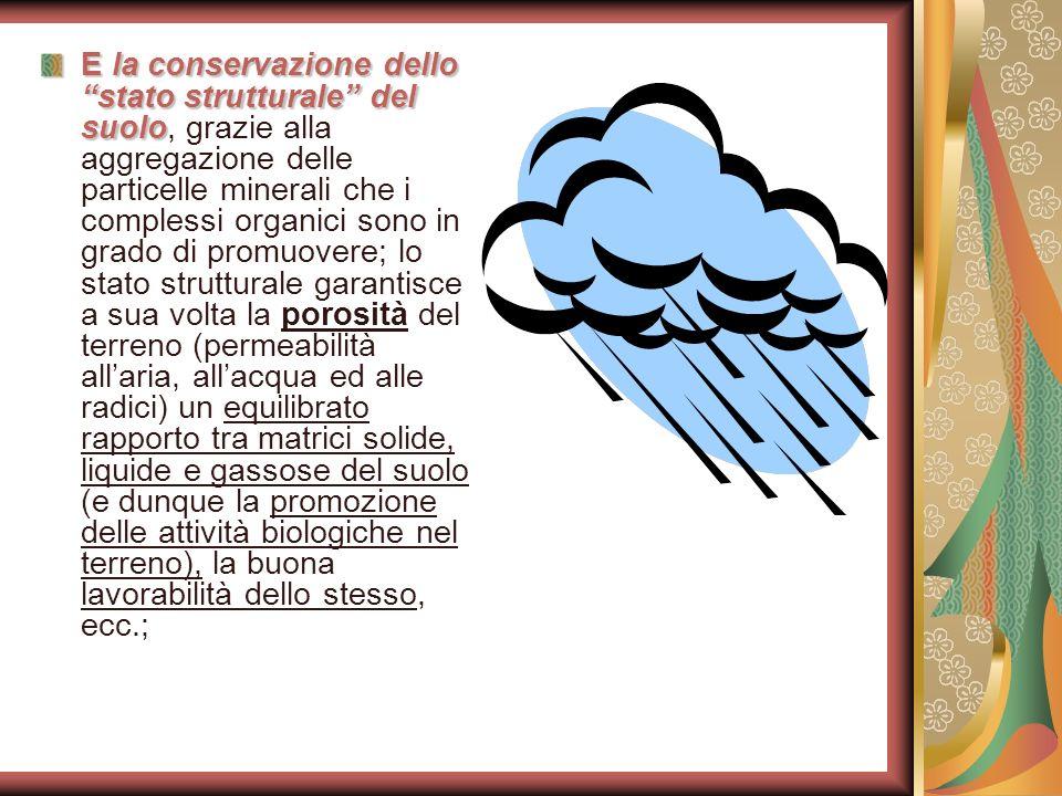 E la conservazione dello stato strutturale del suolo E la conservazione dello stato strutturale del suolo, grazie alla aggregazione delle particelle m