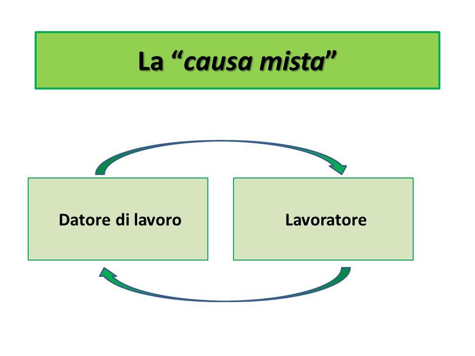 Lorigine … … e le fonti di disciplina.