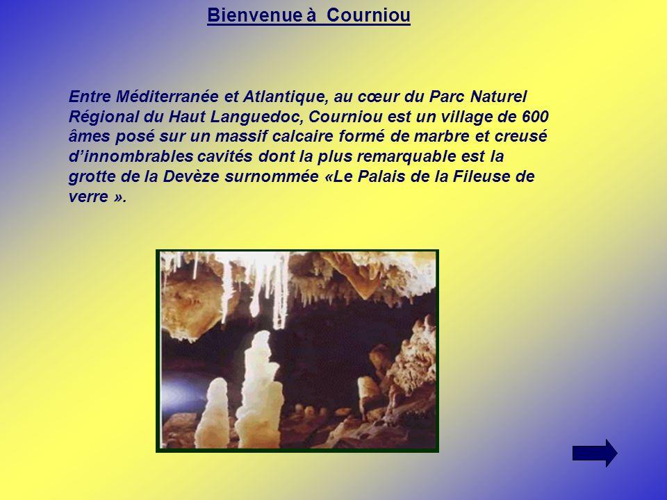 Bienvenue à Courniou Entre Méditerranée et Atlantique, au cœur du Parc Naturel Régional du Haut Languedoc, Courniou est un village de 600 âmes posé su