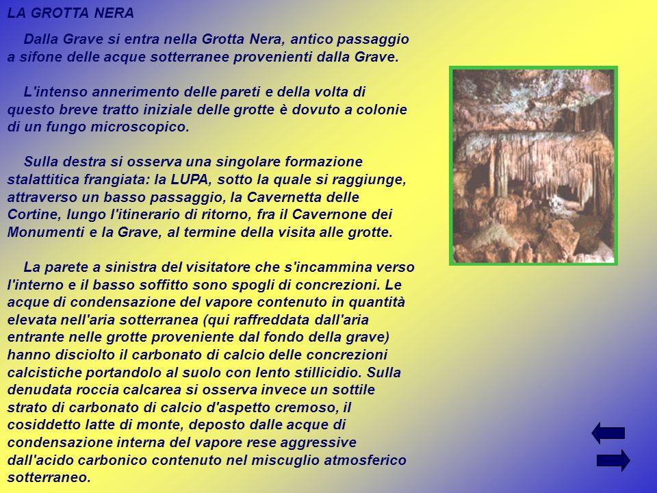 LA GROTTA NERA Dalla Grave si entra nella Grotta Nera, antico passaggio a sifone delle acque sotterranee provenienti dalla Grave. L'intenso anneriment