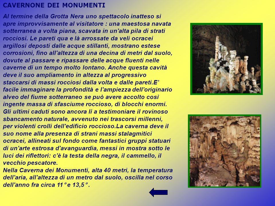 CAVERNONE DEI MONUMENTI Al termine della Grotta Nera uno spettacolo inatteso si apre improvvisamente al visitatore : una maestosa navata sotterranea a