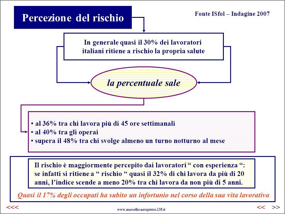Percezione del rischio Fonte ISfol – Indagine 2007 In generale quasi il 30% dei lavoratori italiani ritiene a rischio la propria salute la percentuale