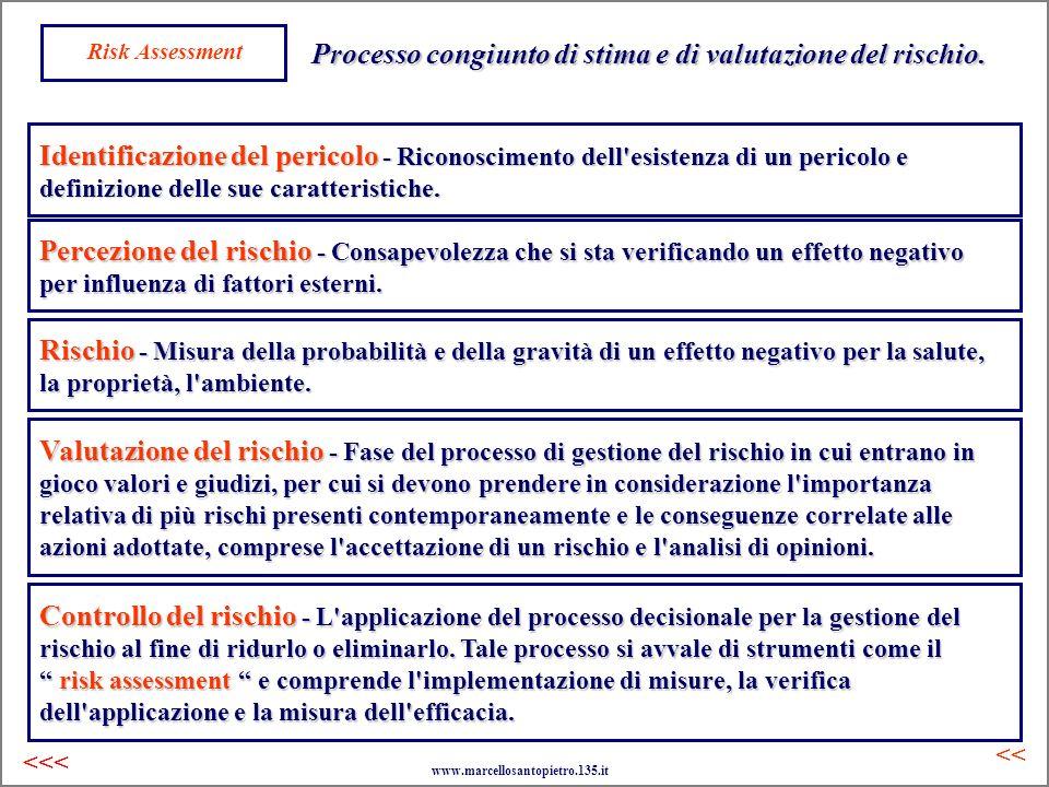Risk Assessment Processo congiunto di stima e di valutazione del rischio. Identificazione del pericolo - Riconoscimento dell'esistenza di un pericolo