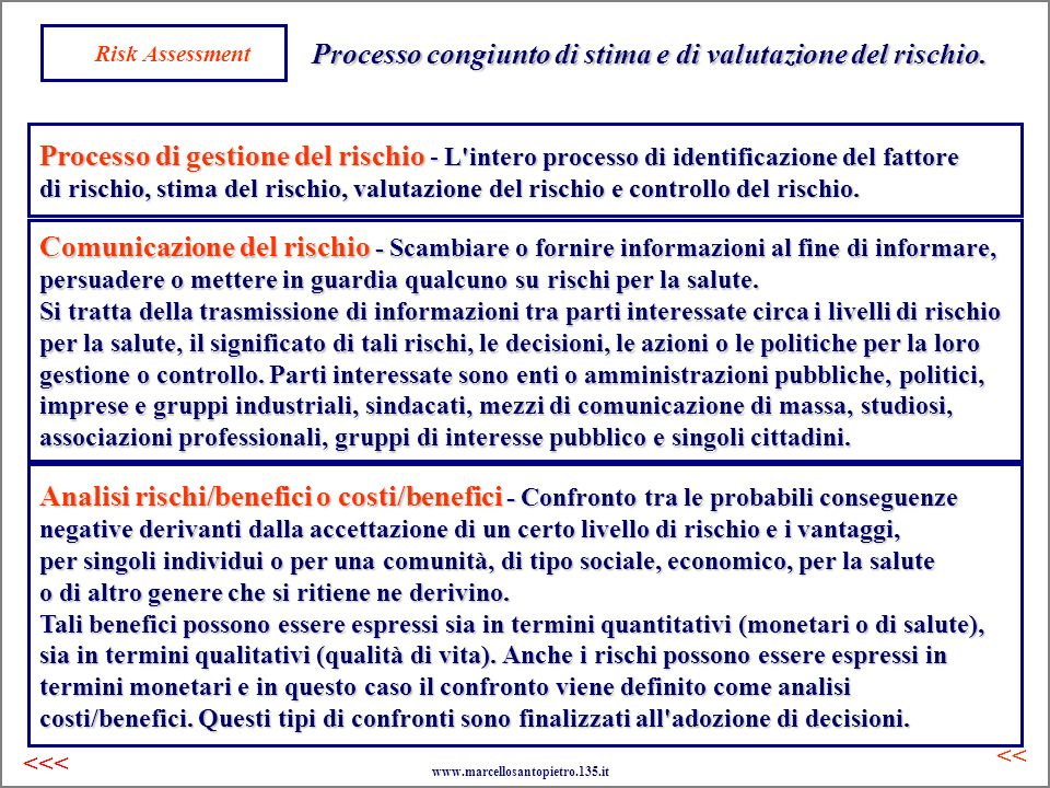 Risk Assessment Analisi rischi/benefici o costi/benefici - Confronto tra le probabili conseguenze negative derivanti dalla accettazione di un certo li