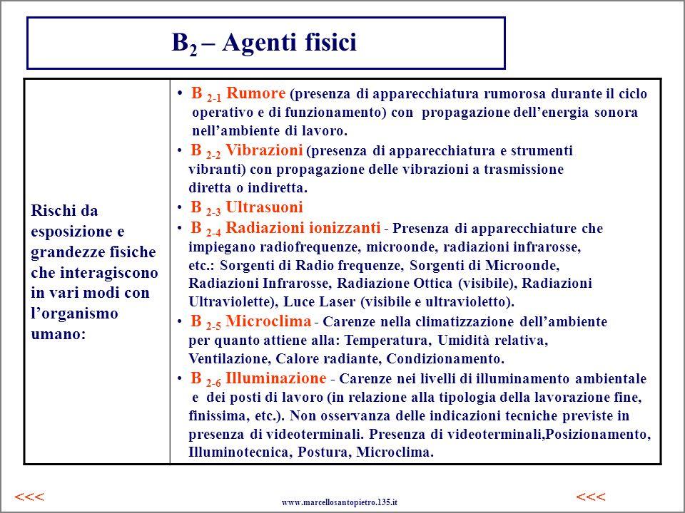 B 2 – Agenti fisici Rischi da esposizione e grandezze fisiche che interagiscono in vari modi con lorganismo umano: B 2-1 Rumore (presenza di apparecch