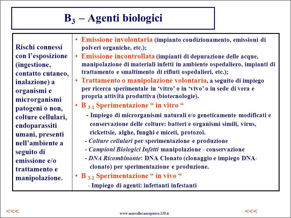 B 3 – Agenti biologici Rischi connessi con lesposizione (ingestione, contatto cutaneo, inalazione) a organismi e microrganismi patogeni o non, colture