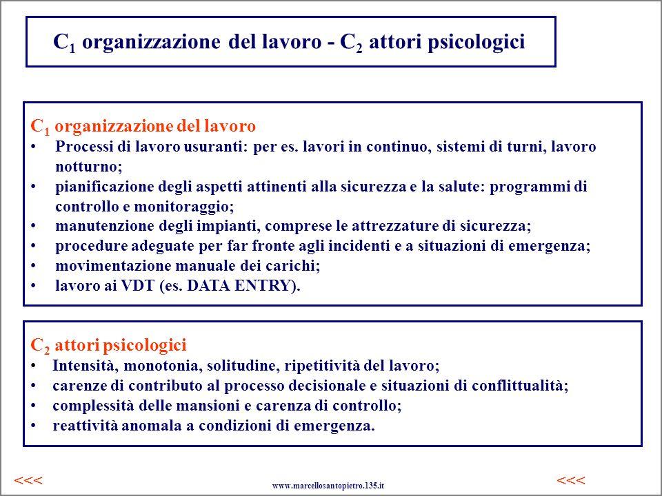 C 1 organizzazione del lavoro - C 2 attori psicologici C 1 organizzazione del lavoro Processi di lavoro usuranti: per es. lavori in continuo, sistemi
