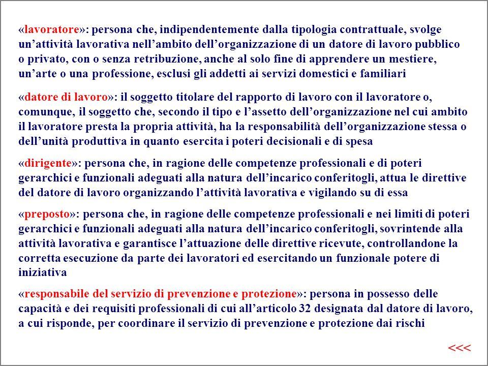 «lavoratore»: persona che, indipendentemente dalla tipologia contrattuale, svolge unattività lavorativa nellambito dellorganizzazione di un datore di
