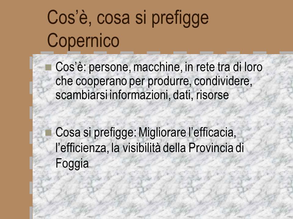 Copernico = networking Persone (amministratori e dipendenti della Provincia) Macchine (personal computer e altre attrezzature) Rete (apparati necessari per i col- legamenti tra le macchine) Procedure (programmi applicativi)