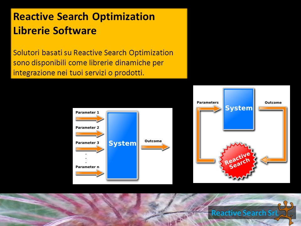 Ottimizzazione continua CRTS – Continuous Reactive Tabu Search RASH – Reactive Affine Shaker
