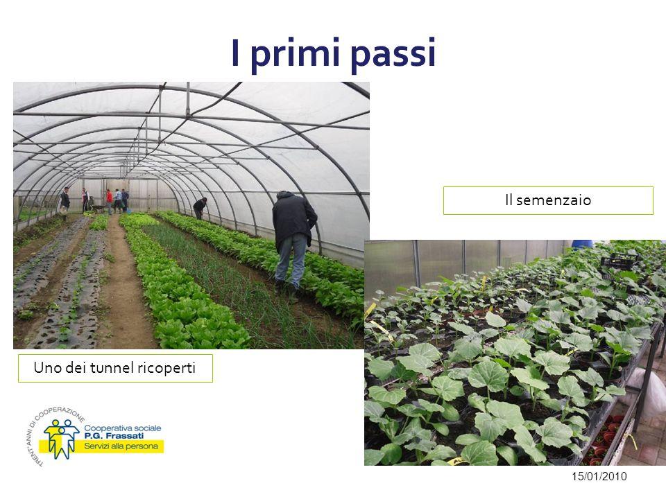 I primi passi 15/01/2010 Uno dei tunnel ricoperti Il semenzaio