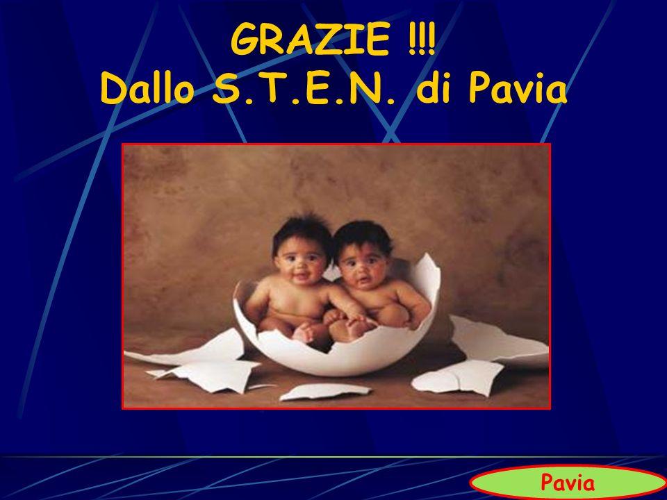 GRAZIE !!! Dallo S.T.E.N. di Pavia Pavia