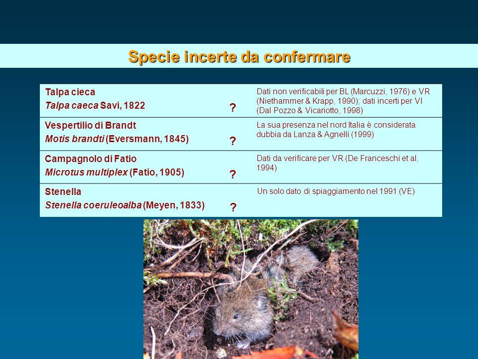 Specie incerte da confermare Talpa cieca Talpa caeca Savi, 1822 ? Dati non verificabili per BL (Marcuzzi, 1976) e VR (Niethammer & Krapp, 1990); dati