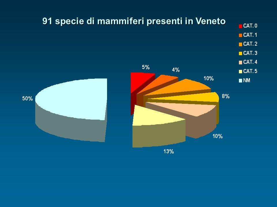 91 specie di mammiferi presenti in Veneto