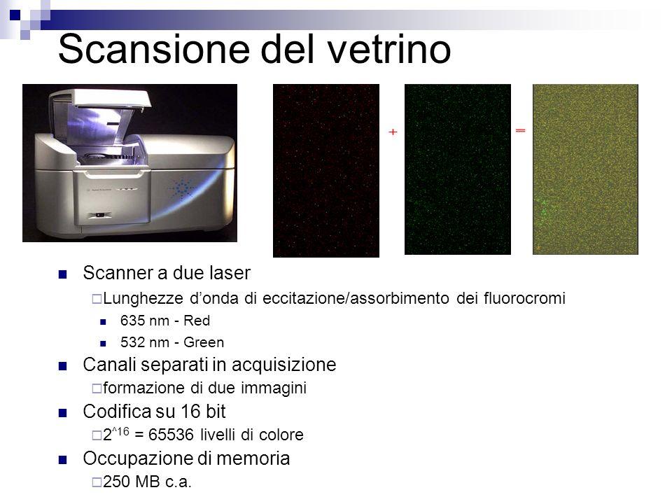 Scansione del vetrino Scanner a due laser Lunghezze donda di eccitazione/assorbimento dei fluorocromi 635 nm - Red 532 nm - Green Canali separati in a