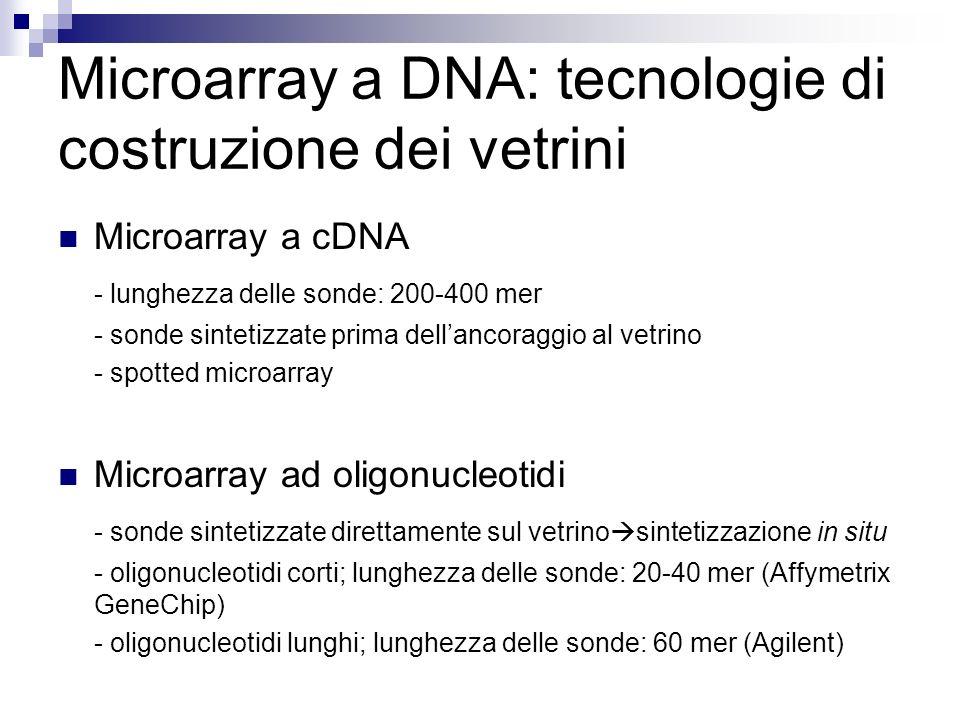 Microarray a DNA: tecnologie di costruzione dei vetrini Microarray a cDNA - lunghezza delle sonde: 200-400 mer - sonde sintetizzate prima dellancoragg