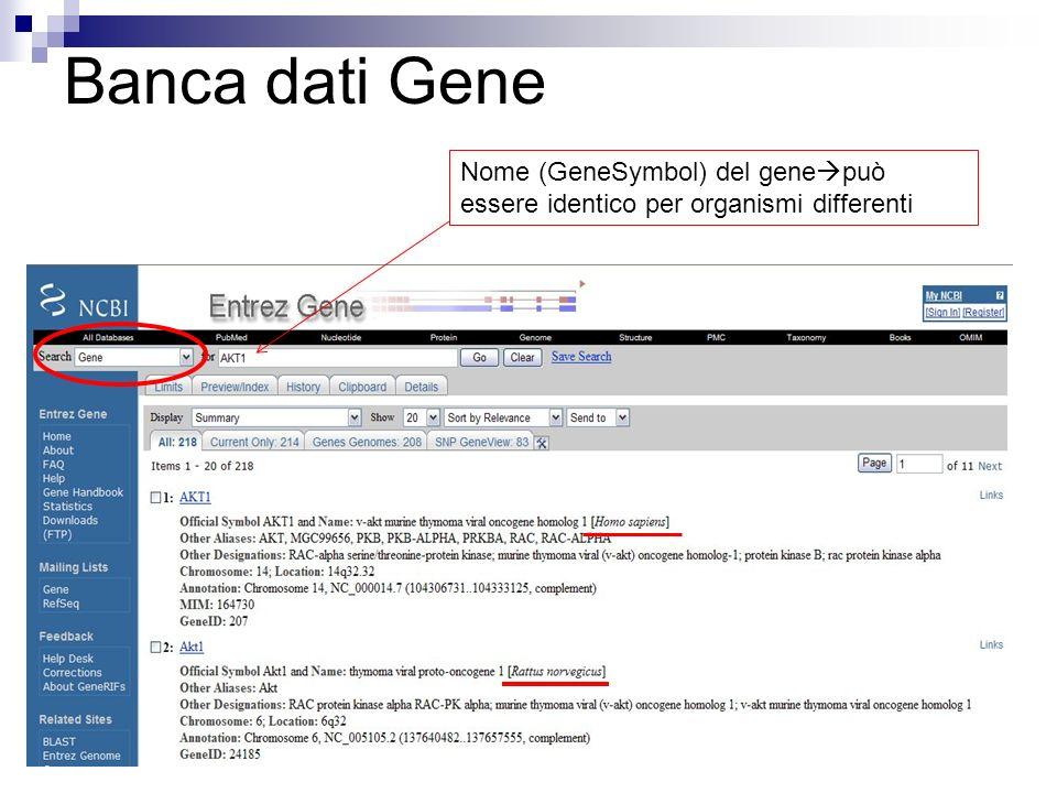 Banca dati Gene Nome (GeneSymbol) del gene può essere identico per organismi differenti
