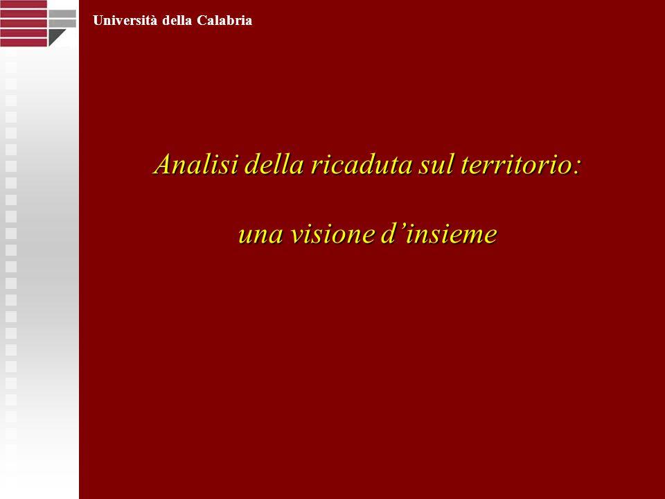Analisi della ricaduta sul territorio: una visione dinsieme Università della Calabria