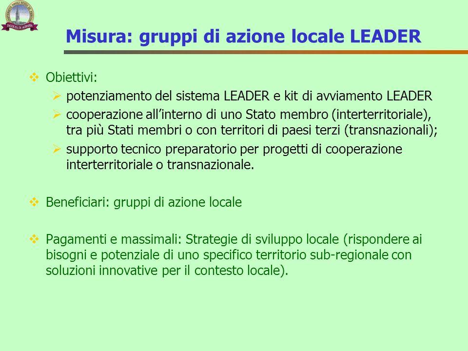 Misura: gruppi di azione locale LEADER Obiettivi: potenziamento del sistema LEADER e kit di avviamento LEADER cooperazione allinterno di uno Stato mem