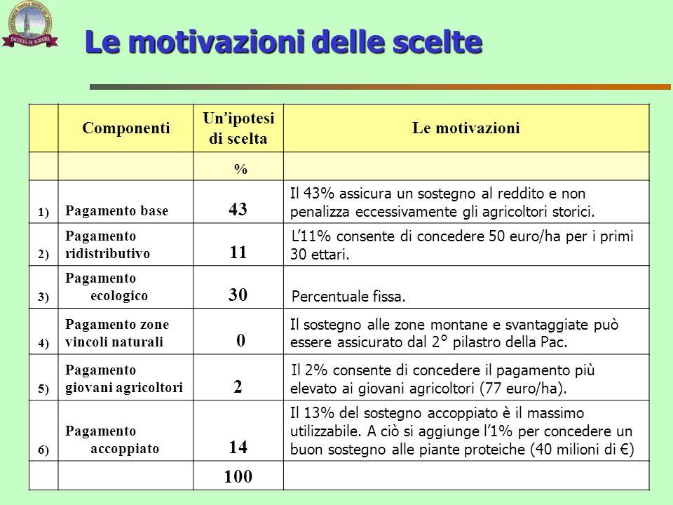 Le motivazioni delle scelte Componenti Un ipotesi di scelta Le motivazioni % 1) Pagamento base 43 Il 43% assicura un sostegno al reddito e non penaliz