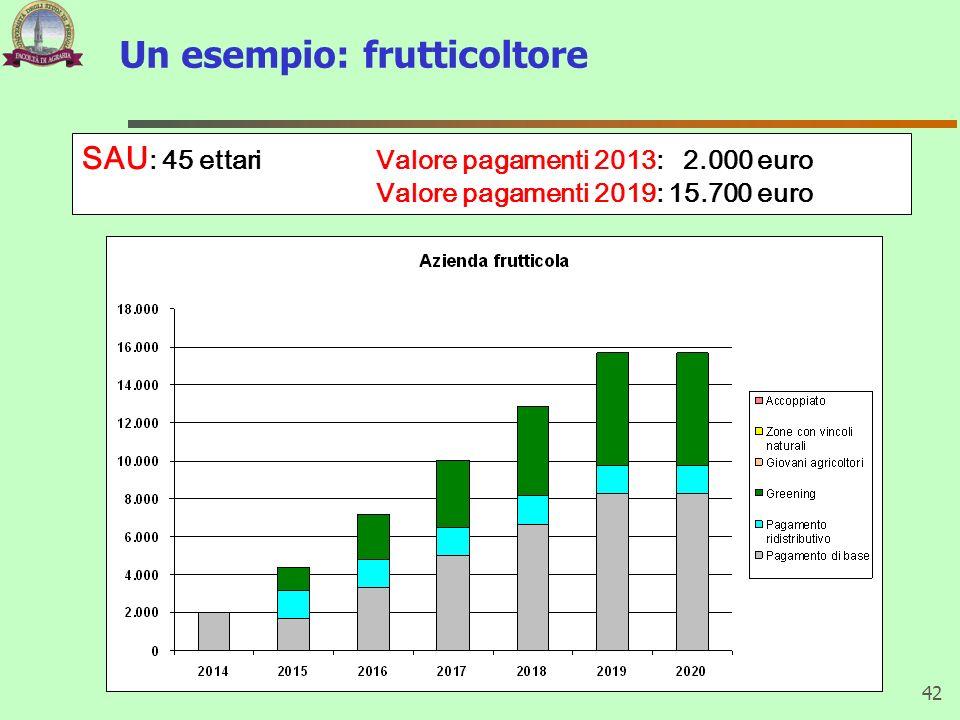 Un esempio: frutticoltore 42 SAU : 45 ettari Valore pagamenti 2013: 2.000 euro Valore pagamenti 2019: 15.700 euro