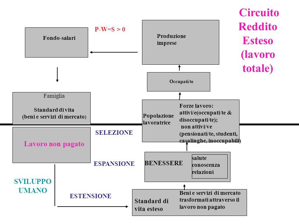 Fondo-salari SVILUPPO UMANO Occupati/te Forze lavoro: attivi/e(occupati/te & disoccupati/te); non attivi/ve (pensionati/te, studenti, casalinghe, inoccupabili) Circuito Reddito Esteso (lavoro totale) Standard di vita esteso P-W=S > 0 Beni e servizi di mercato trasformati attraverso il lavoro non pagato Produzione imprese Popolazione lavoratrice ESTENSIONE Famiglia Standard di vita (beni e servizi di mercato ) ESPANSIONE Lavoro non pagato BENESSERE salute conoscenza relazioni SELEZIONE