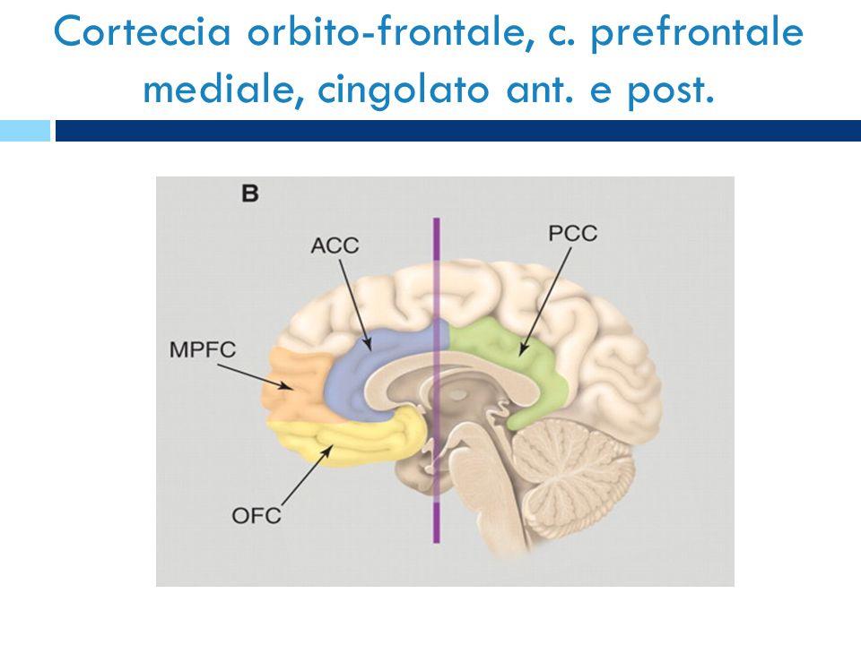 Corteccia orbito-frontale, c. prefrontale mediale, cingolato ant. e post.