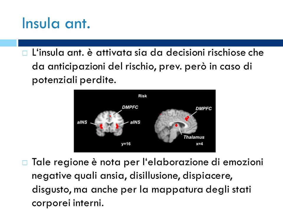Insula ant. Linsula ant. è attivata sia da decisioni rischiose che da anticipazioni del rischio, prev. però in caso di potenziali perdite. Tale region