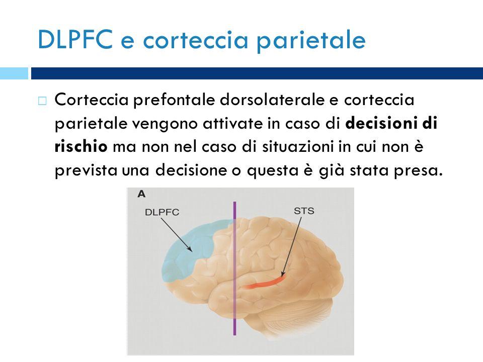 DLPFC e corteccia parietale Corteccia prefontale dorsolaterale e corteccia parietale vengono attivate in caso di decisioni di rischio ma non nel caso