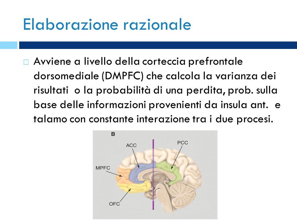 Elaborazione razionale Avviene a livello della corteccia prefrontale dorsomediale (DMPFC) che calcola la varianza dei risultati o la probabilità di un