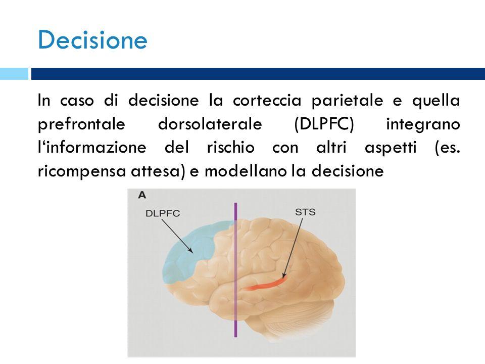 Decisione In caso di decisione la corteccia parietale e quella prefrontale dorsolaterale (DLPFC) integrano linformazione del rischio con altri aspetti