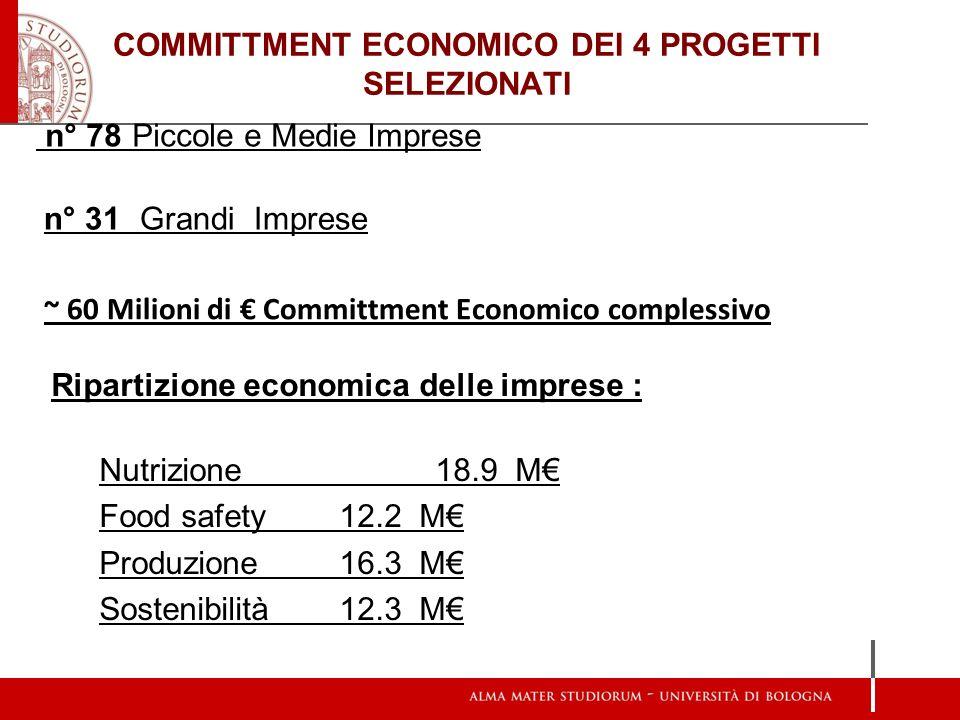 COMMITTMENT ECONOMICO DEI 4 PROGETTI SELEZIONATI n° 78 Piccole e Medie Imprese n° 31 Grandi Imprese ~ 60 Milioni di Committment Economico complessivo
