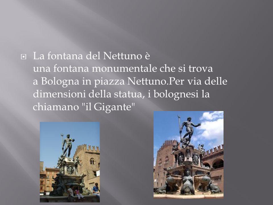 La fontana del Nettuno è una fontana monumentale che si trova a Bologna in piazza Nettuno.Per via delle dimensioni della statua, i bolognesi la chiama