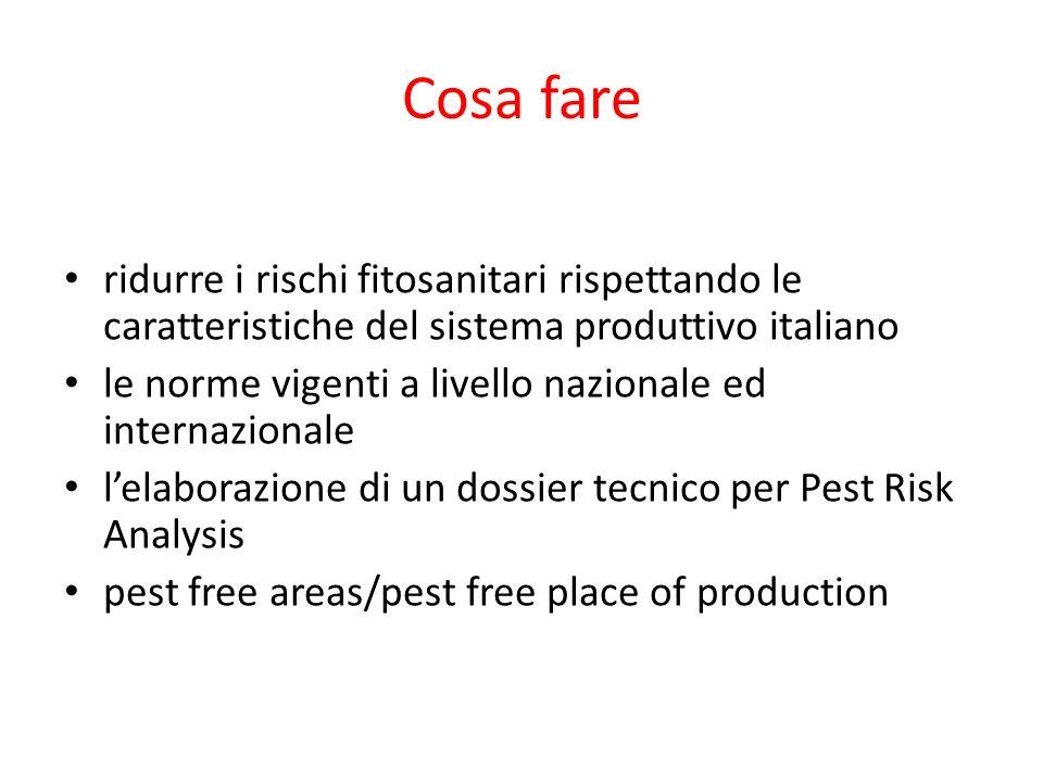 Cosa fare ridurre i rischi fitosanitari rispettando le caratteristiche del sistema produttivo italiano le norme vigenti a livello nazionale ed internazionale lelaborazione di un dossier tecnico per Pest Risk Analysis pest free areas/pest free place of production