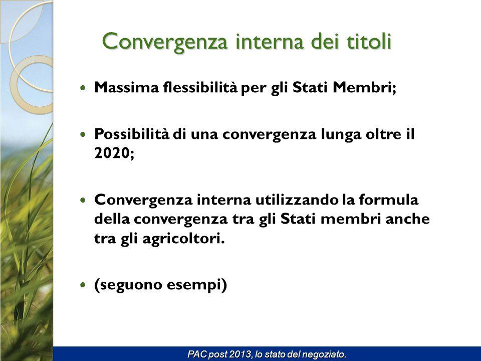 Massima flessibilità per gli Stati Membri; Possibilità di una convergenza lunga oltre il 2020; Convergenza interna utilizzando la formula della convergenza tra gli Stati membri anche tra gli agricoltori.