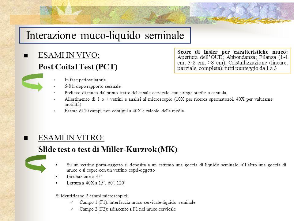 Interazione muco-liquido seminale ESAMI IN VIVO: Post Coital Test (PCT) ESAMI IN VITRO: Slide test o test di Miller-Kurzrok (MK) In fase periovulatori