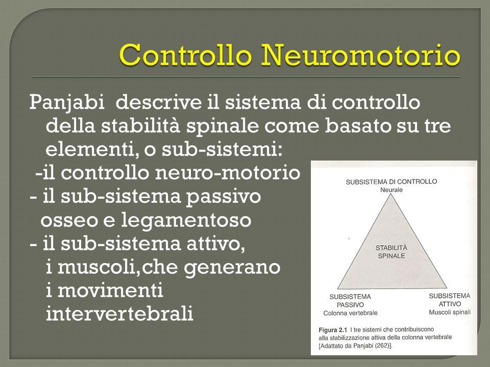 Panjabi descrive il sistema di controllo della stabilità spinale come basato su tre elementi, o sub-sistemi: -il controllo neuro-motorio - il sub-sist