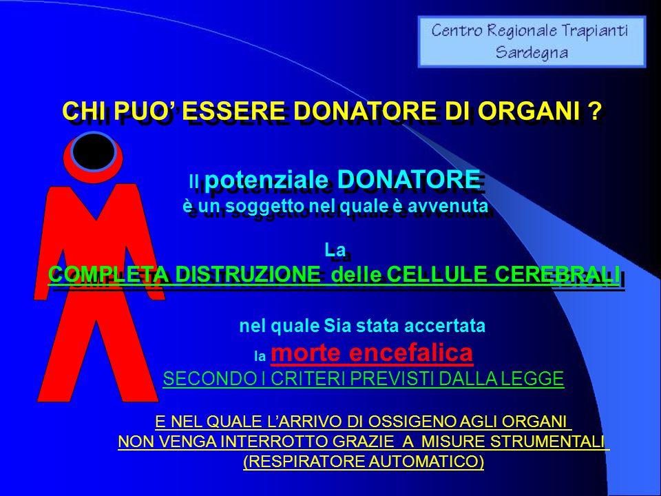 CHI PUO ESSERE DONATORE DI ORGANI ? Il potenziale DONATORE è un soggetto nel quale è avvenuta La COMPLETA DISTRUZIONE delle CELLULE CEREBRALI Il poten