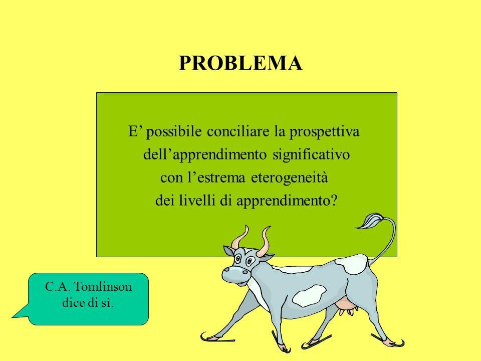PROBLEMA E possibile conciliare la prospettiva dellapprendimento significativo con lestrema eterogeneità dei livelli di apprendimento? C.A. Tomlinson