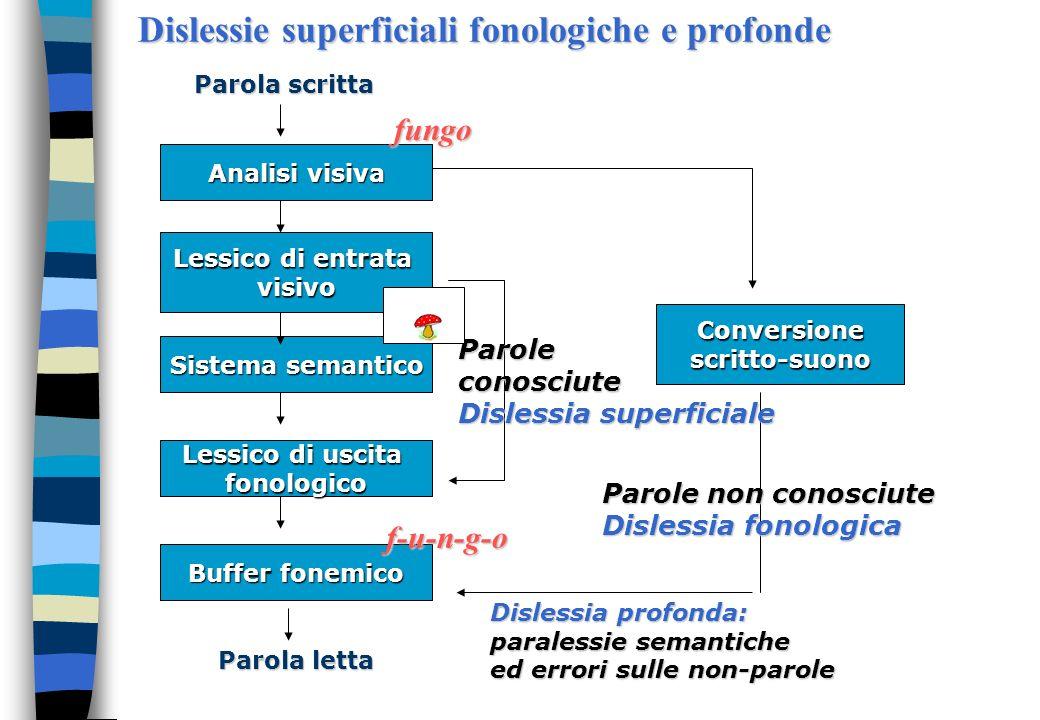 Altre proposte di suddivisione Lovett (1984; Lovett et al. 2000) propone di distinguere tra due tipi di disabilità della lettura. Questa distinzione è