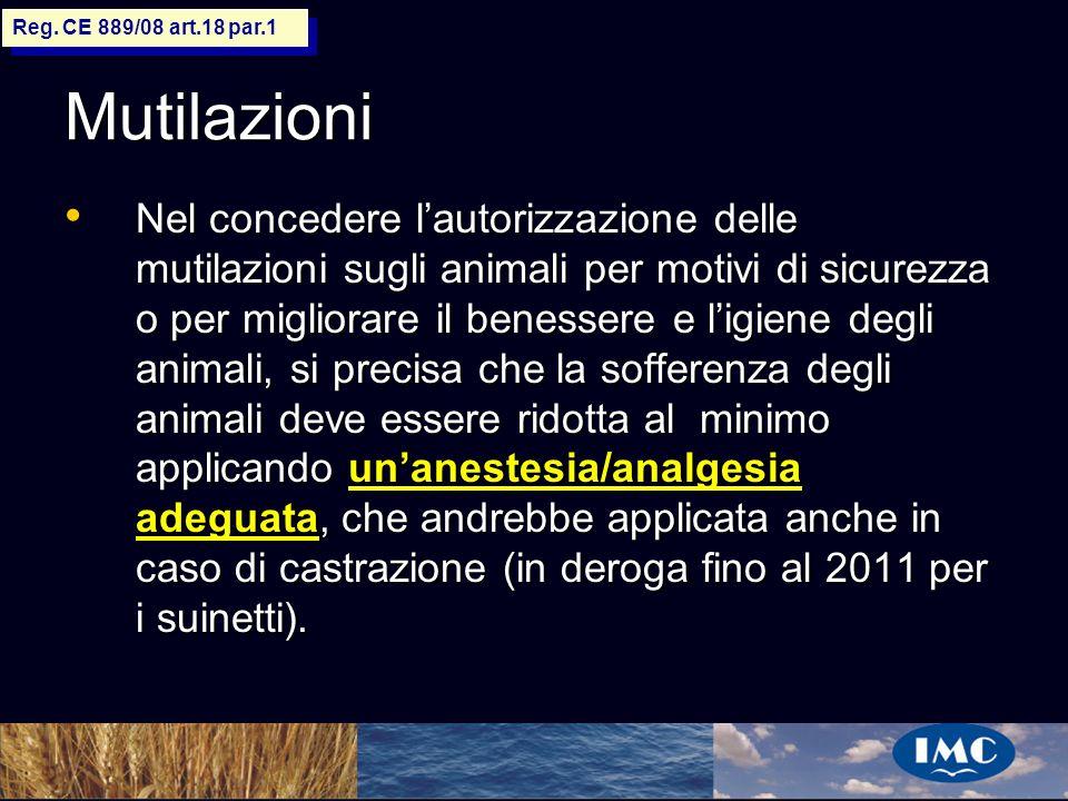 Sergio Benedetti Mutilazioni Nel concedere lautorizzazione delle mutilazioni sugli animali per motivi di sicurezza o per migliorare il benessere e lig
