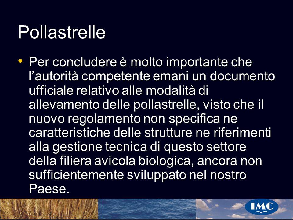 Sergio Benedetti Pollastrelle Per concludere è molto importante che lautorità competente emani un documento ufficiale relativo alle modalità di alleva