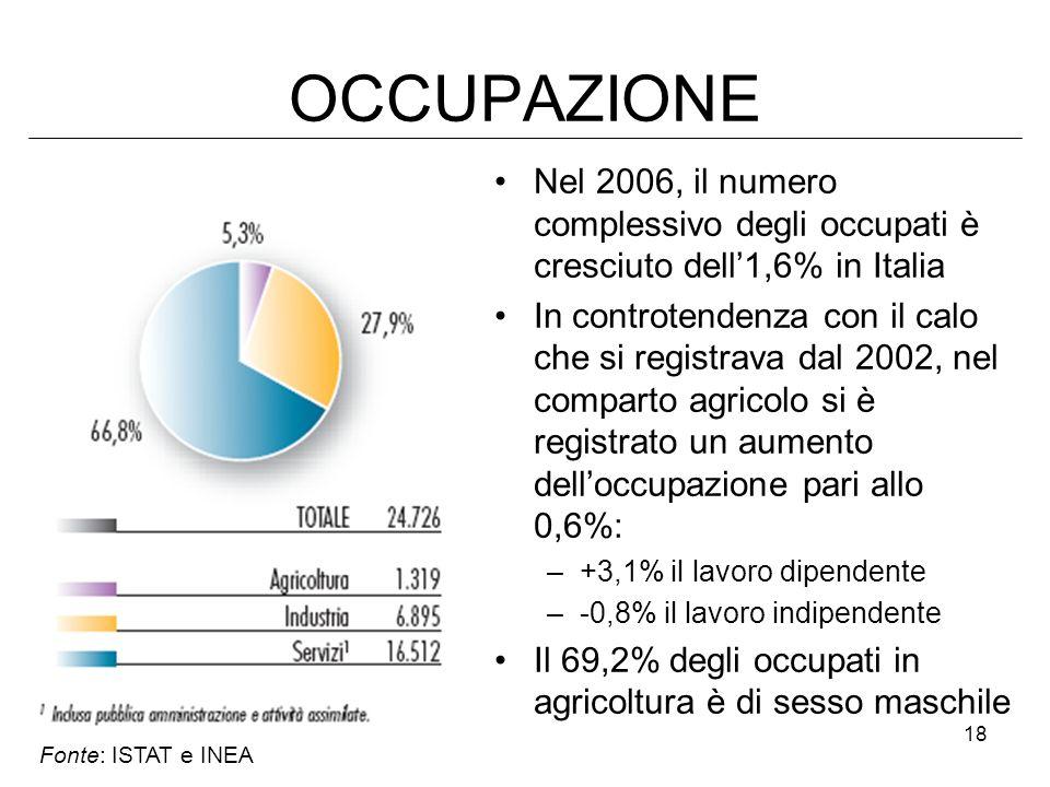 18 OCCUPAZIONE Nel 2006, il numero complessivo degli occupati è cresciuto dell1,6% in Italia In controtendenza con il calo che si registrava dal 2002,